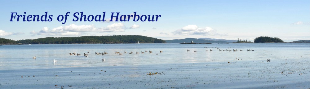 Friends of Shoal Harbour