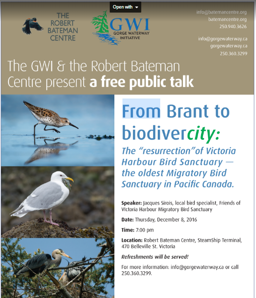 Poster for Urban Sanctuaries talk - Dec 8th.JPG