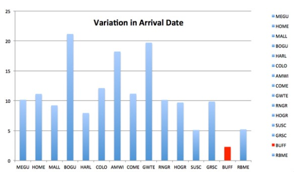 Variation in Arrival Date copy