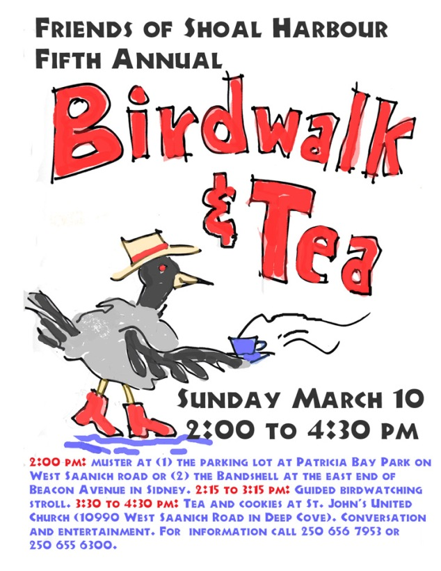 birdwalk and tea 3 small
